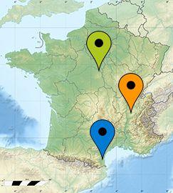 France_treelike_agence